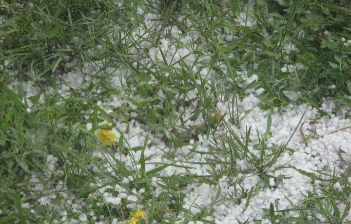 В Казахстане выпал «снег» (видео)