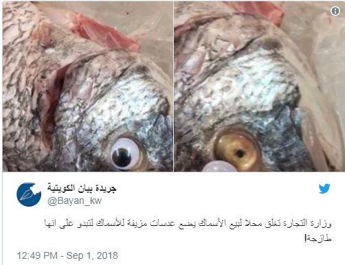Кувайтдаги дўконда балиқни ноодатий усулда «янгилашди»
