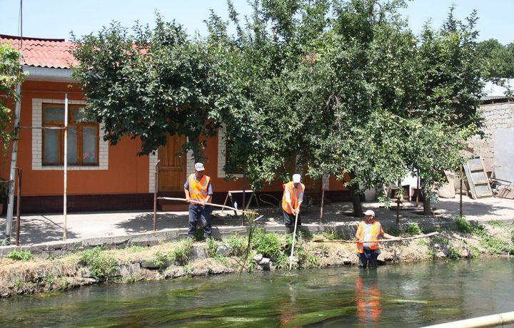 В Ташкенте начаты работы по облагораживанию берегов рек и каналов