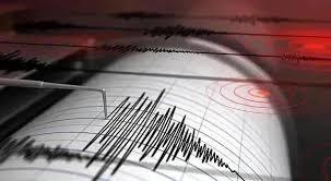 Почти во всех регионах Узбекистана ощущалось землетрясение