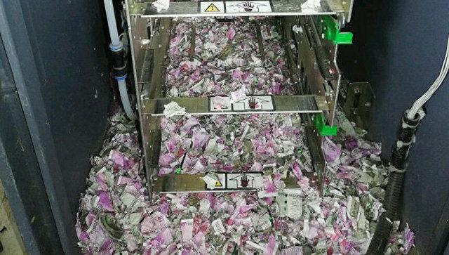 Сичқон 1,23 миллион рупийни еб қўйди