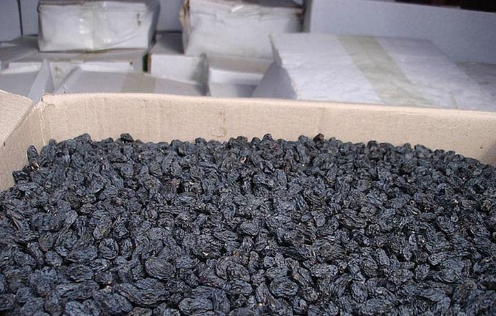 Тошкентда 1 тоннадан ортиқ буғдойни майизга «айлантириб юборишди»