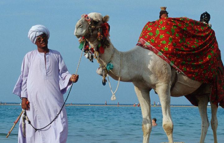 Жителям Египта запретят вход на пляжи