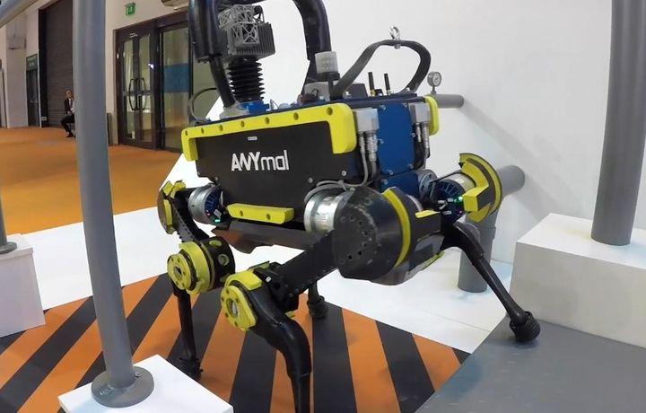 Швейцарияликлар роботни мусиқа садоларига монанд рақсга тушишга ўргатди (видео)