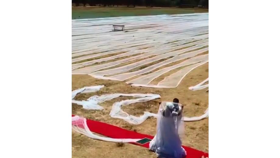 Гиннеснинг рекордлар китобига кирган келинчак