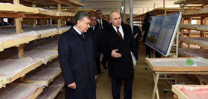 Shavkat Mirziyoyev Termizdagi innovatsion pillaxona bilan tanishdi