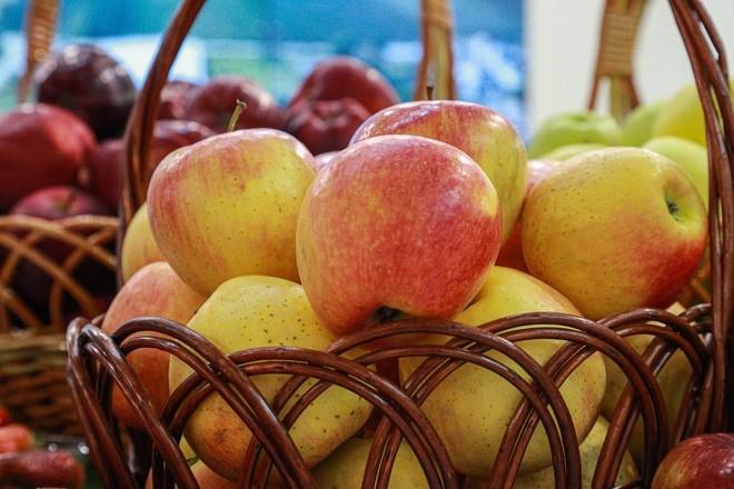 Диетолог объяснила, как правильно есть фрукты