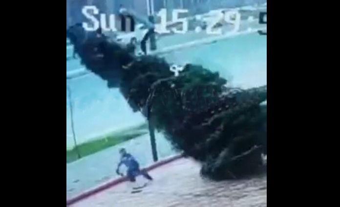 O'yinchoq olmoqchi bo'lgan bola ustiga katta archa qulab tushdi (video)