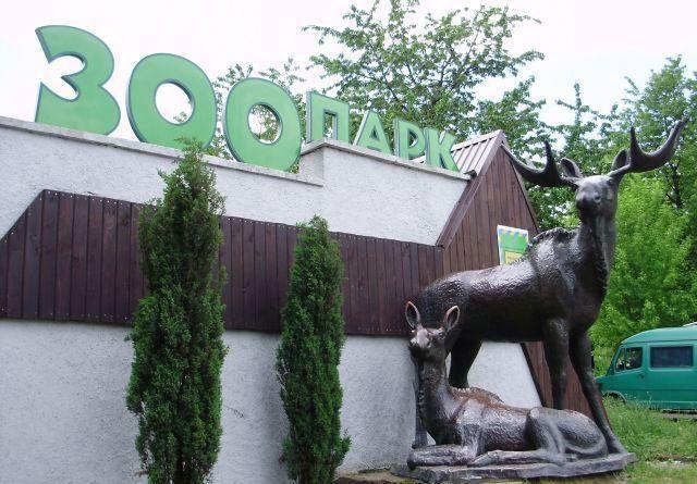 Самые крутые зоопарки мира (фото)