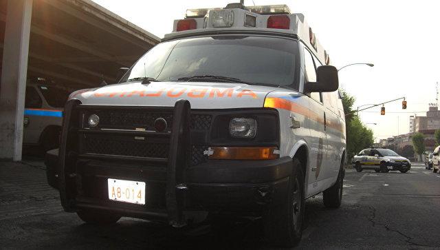 Meksikada avtobus jarlikka qulashi natijasida 8 kishi halok bo'ldi