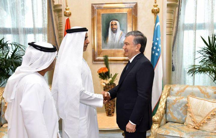 Шавкат Мирзиёев встретился с министром внутренних дел ОАЭ