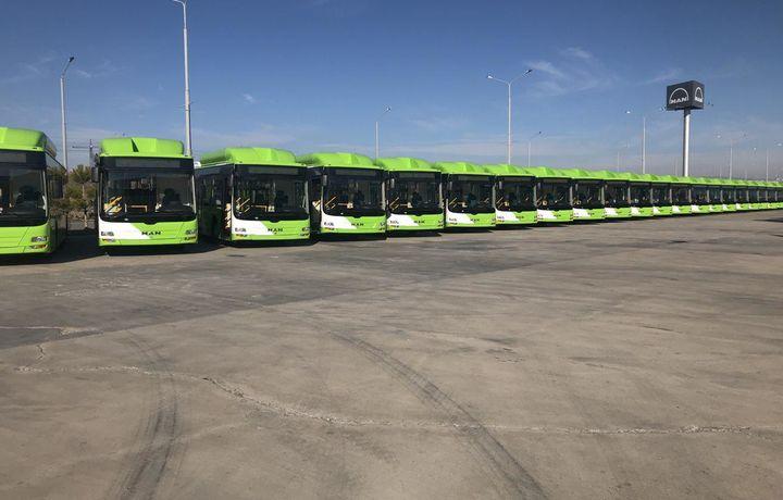 Тошкентга яна 30 та катта «МАN» автобуслари олиб келинди