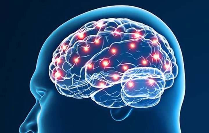 Исследователи смогли перепрограммировать мозг
