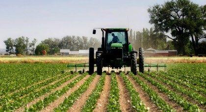 «Бир фермерга битта ёш» лойиҳаси асосида 10 мингдан зиёд ёшларга даромад олиш имкони берилди