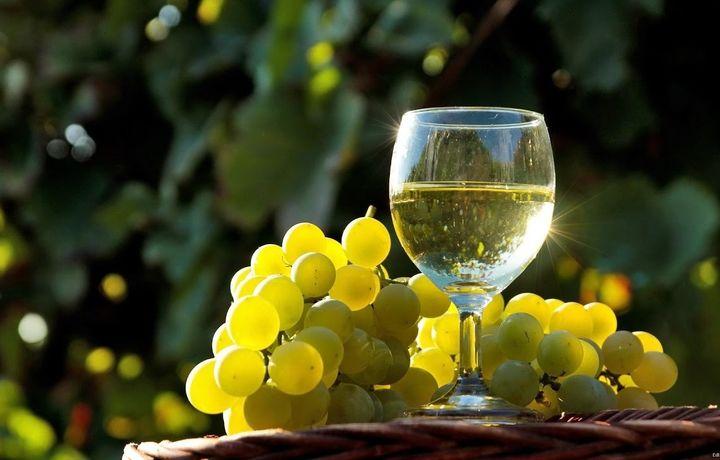 Узумчилик ва виночиликни ривожлантириш агентлиги ташкил этилди
