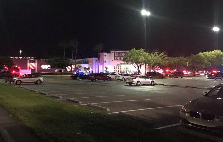 Опубликовано видео с места стрельбы во Флориде (видео)