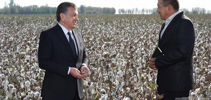 Шавкат Мирзиёев ознакомился с процессом уборки урожая в Ташкентской области