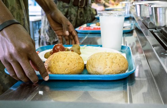Финляндия армиясида вегетарианлик куни жорий этилади