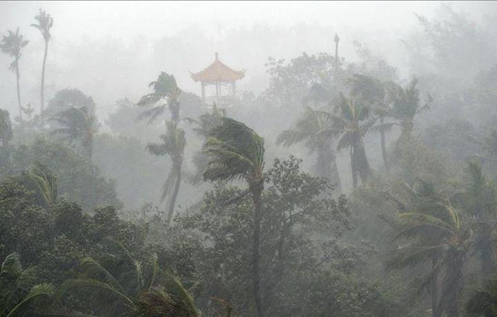 В результате циклона в Индии погибли 10 человек
