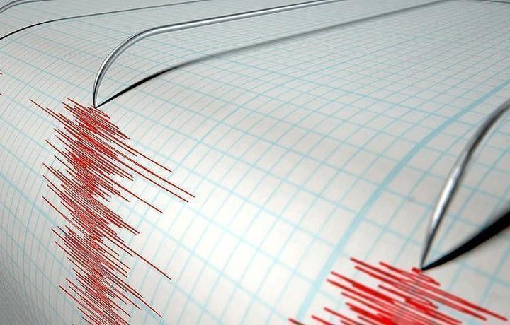 В Грузии произошло землетрясение магнитудой 4,6